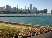 Skyline view from the Shedd Aquarium