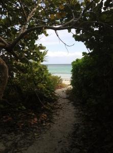 Pata Prieta Beach, Vieques